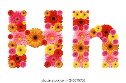 h, flower alphabet