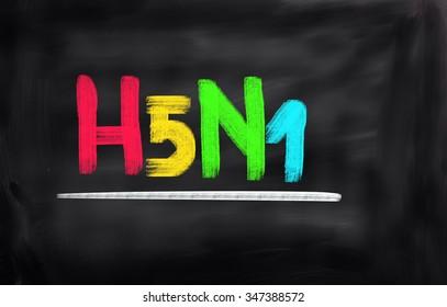 H5N1 Concept