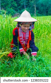 HA GIANG , VIETNAM - SEP 14 : Woman from the Red Dao minority in a village near Ha Giang in Vietnam on September 14 2018. The Red Dao is one of the 54 ethnic groups of Vietnam