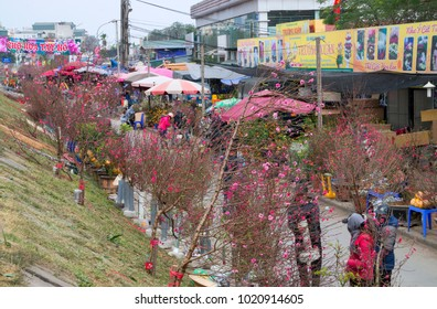 HA NOI, VIETNAM, February 7, 2018 Ha Noi people, hiking the flower market Nhat Tan, Ha Noi, Vietnam, hatched in the spring