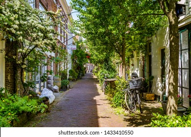 Haarlem, The Netherlands - May 31, 2019: Cozy green little street in Haarlem. Concept social inclusion and climate change