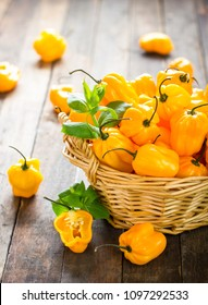 Habanero peppers on the wooden table