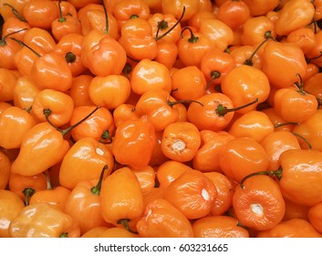 Habanero Peppers at a produce stand.