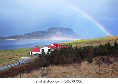 Habitat among beautiful nature surrounded by mountains, grasslands with rainbow in morning time at Iceland.