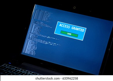 Hacking Computers In The Dark - Access Granted Green Success