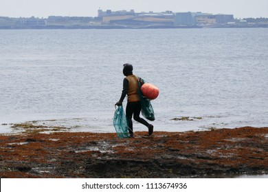 Haenyo diver woman with nets and floatation device going at sea to harvest seafood in Jeju Island, South Korea.