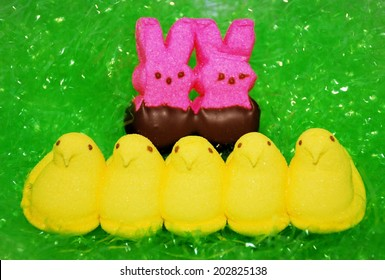 HAGERSTOWN, MD - JUNE 30, 2014: Image of Peeps Marshmallow Chicks. Peeps are a popular Easter candy in the US and Canada.