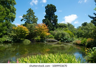 Hagley Park in Christchurch, New Zealand