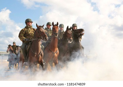 Exercising Horse Images, Stock Photos & Vectors | Shutterstock