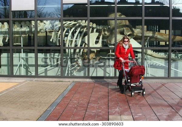 THE HAGUE, NETHERLANDS - February 21, 2016.  Mother and baby in stroller are visiting the Museon Museum. At the background is a skeleton of a sperm whale. Animals and nature.