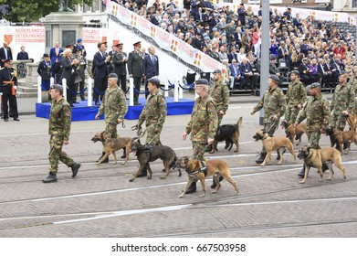 The Hague, The Netherlands - June 24, 2017: Dutch veterans with their dogs march past King Willem-Alexander, the Prime Minister and the Minister of Defence in the annual parade on veterans day