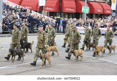 The Hague, The Netherlands - June 24, 2017: Dutch veterans with their dogs march in the annual parade on veterans day in The Hague