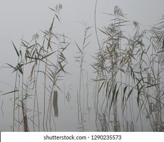 Haiku-images for Haiku poem