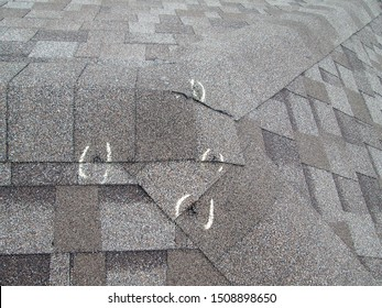 Hail Damaged Roofing Shingles Inspection