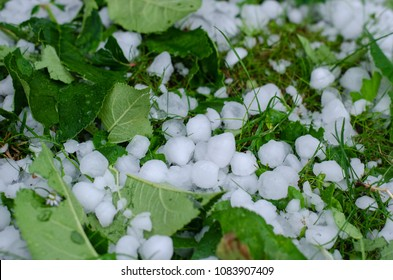 hailstones on the grass after hailstorm
