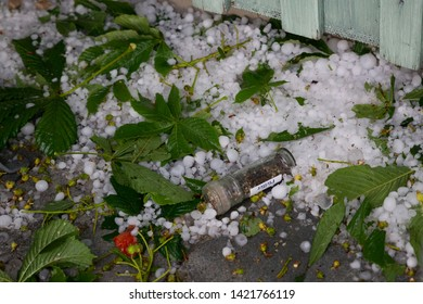 Hailstones with severed leaves and crockery on the ground after a violent thunderstorm German Text Pepper