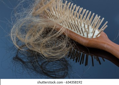 hair brush with hair