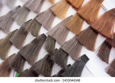 Hair Color Chart Images, Stock Photos & Vectors | Shutterstock