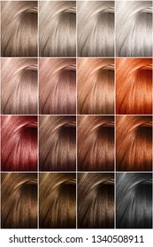 Hair color palette with a wide range of samples. Samples of dyed hair dyes. Hair texture in different colors