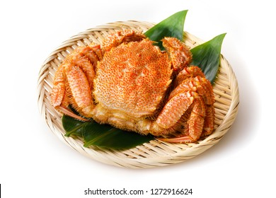 Hair crab on white background