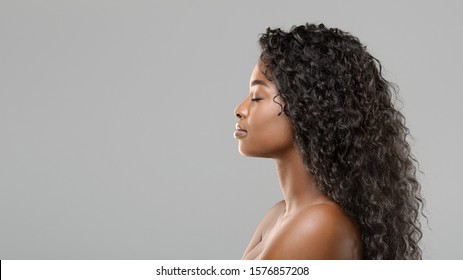 Hair extension concept. Profile portrait of beautiful curly african american woman over gray background, panorama with free space