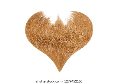 Hair heart. Blond beard isolated on white background