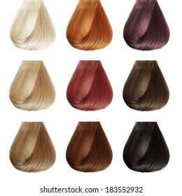 Hair Palette. Colors Set. Tints