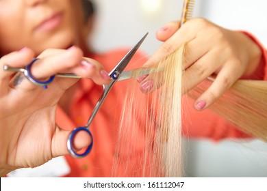 Hair salon. Women`s haircut. Cutting.