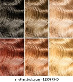 Hair tint samples set