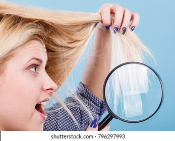 Haircare and hairstyling, bad effects of bleaching concept. Shocked blonde woman looking at her damaged, split hair ends through magnifying glass.