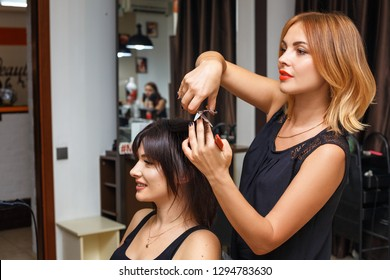 haircut in the beauty salon, hair care