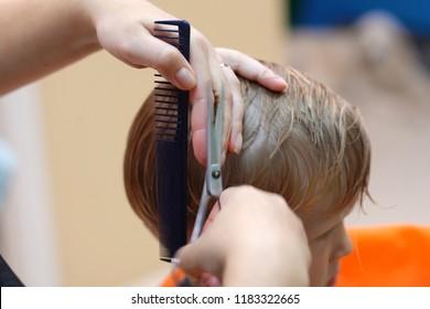 haircut of a little boy in a children's hairdressing salon