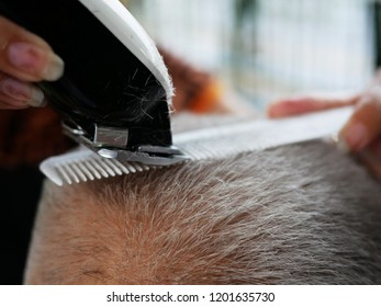 haircutting with hair clipper in the barber shop.