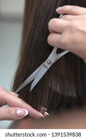 Haircutting process in the hairdresser. woman in the salon smoothes her hair. Hands with scissors. Stock photos for design