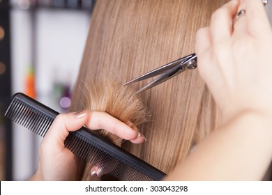 Hairdresser cut blond hair of a woman