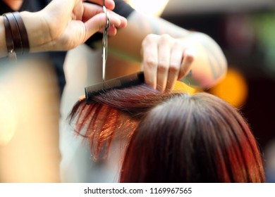 Hairdresser cuts the hair of the client with scissors in the hairdressing salon