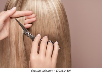 Hairdresser cuts long blonde hair with scissors. Hair salon, hairstylist. Care and beauty hair products. Dyed hair
