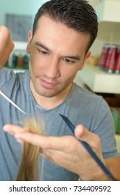 hairdresser is cutting female hair
