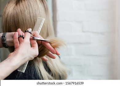 Hairdresser doing haircut. Professional hairdresser scissors, brush on workplace. Professional Hairdresser tools, equipment. Hairdresser service. Beauty salon service. Close up with space for text.