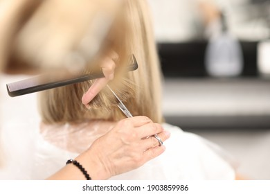 Hairdresser holds comb and scissors in his hands and cuts client's hair. Beauty salon services concept
