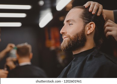 Hairdresser for men barber shop. Process of grooming long hair.