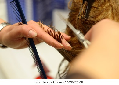 Hairdresser with scissors and comb in hand that is cutting hair