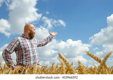 hairless bearded farmer pointing at sky above agricultural wheat fields