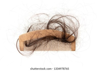 Hairloss problem. Flat lay comb with lost hair on it, isolated on white background.