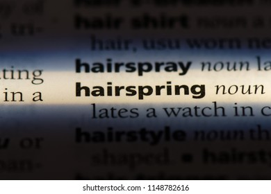 hairspring word in a dictionary. hairspring concept.