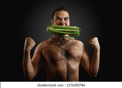 Hairy bearded caucasian man holding in mouth a bunch celery isolated on dark grey background. Concept of diet, appetite, potency and libido increasing.