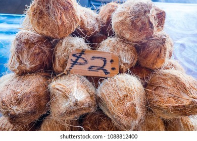 Hairy brown coconuts in husks for sale at Fugalei fresh produce market, Apia, Samoa, South Pacific