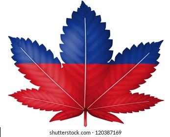 The Haitian flag painted on cannabis or marijuana leaf