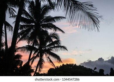 haleiwa north shore sunset