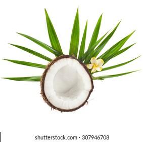 Half Coconut with palm leaves top view  isolated on white background